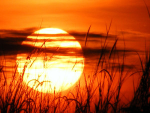 sunrise(1)